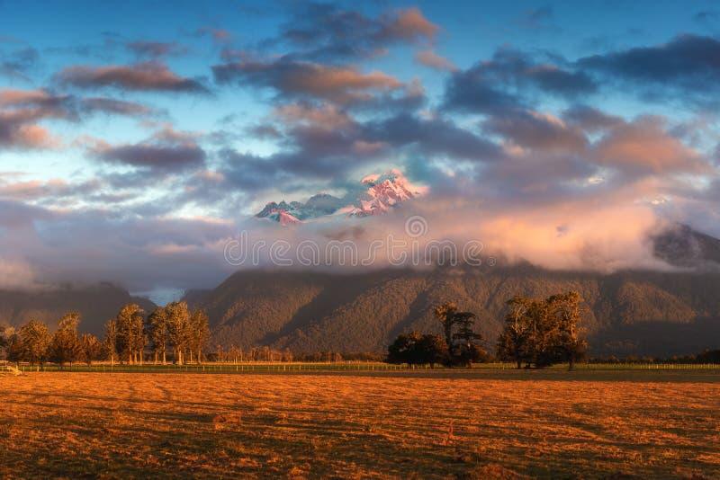 Solnedgång på ängar under nollan Tuawe för rävglaciären/Te Moeka Det är den tempererade maritima glaciären som lokaliseras i West royaltyfri foto