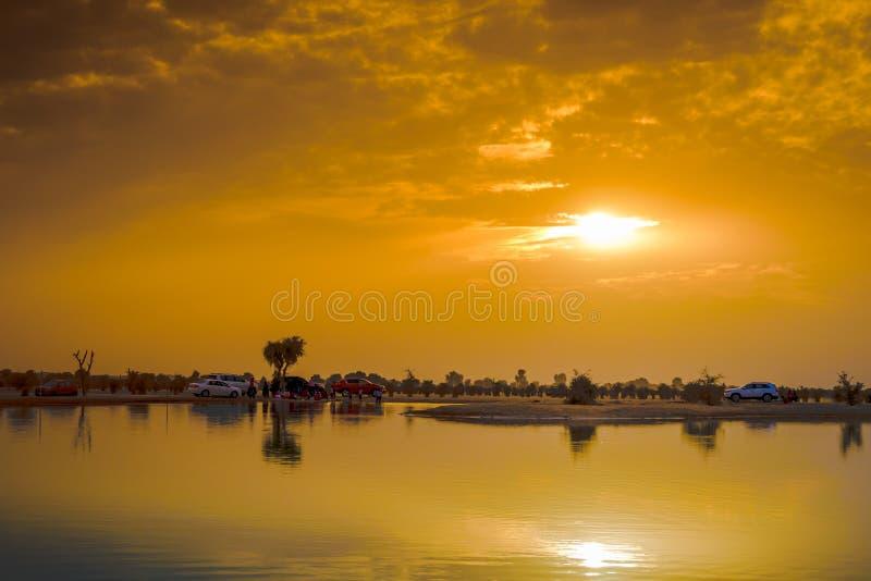 Solnedgång på Al Qudra Lake, Dubai royaltyfri bild