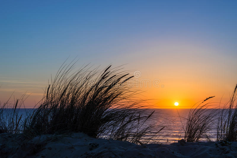 Solnedgång på Atlantic Ocean, strandgräskontur i Frankrike arkivfoton