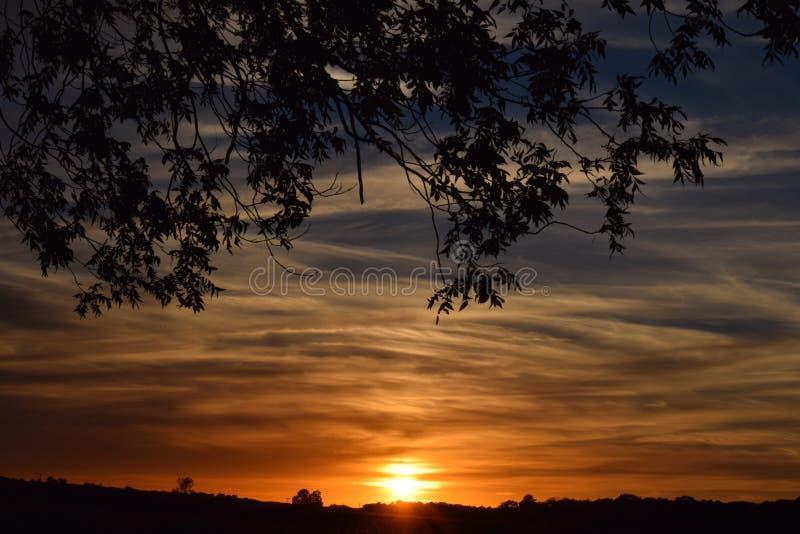 Solnedgång på Delmarva arkivbilder
