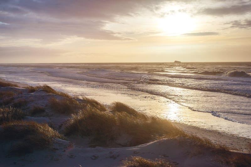 Solnedgång på den danska kusten royaltyfri bild