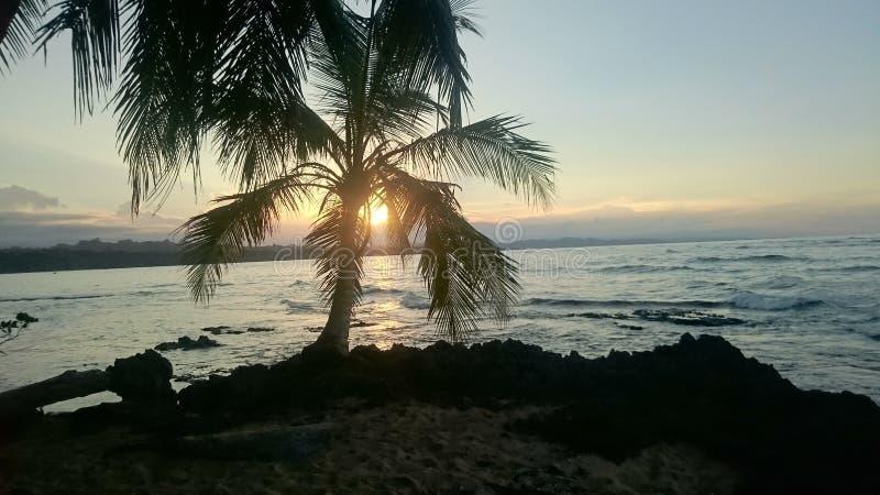Solnedgång på den karibiska stranden royaltyfria foton