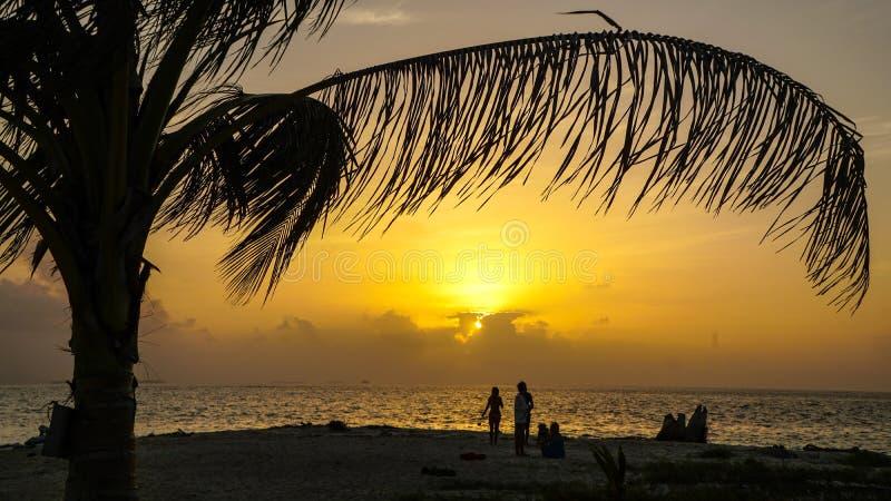 Solnedgång på den karibiska stranden med palmträdet på Sanen Blas Islands mellan Panama och Colombia arkivbilder