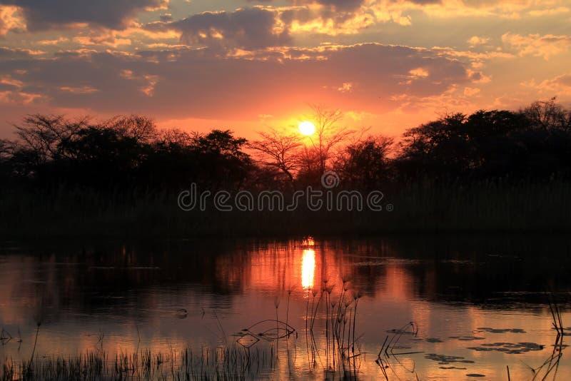 Solnedgång på den Kwando floden royaltyfri foto