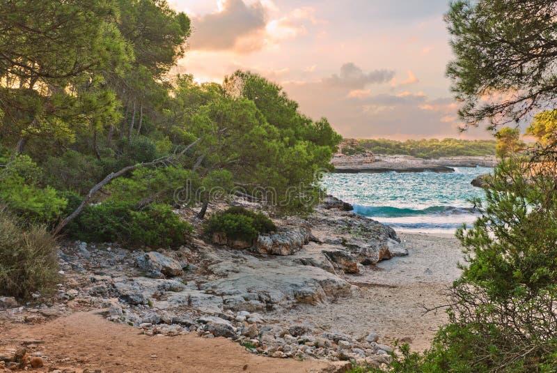Solnedgång på den lilla tropiska Borgit stranden nära den berömda Mandrago stranden Mallorca ö royaltyfria bilder