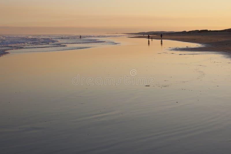 Solnedgång på den Stockton stranden. Anna Bay. Australien. royaltyfria bilder