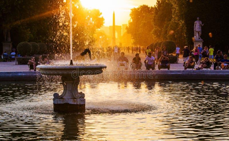 Solnedgång på den Tuileries trädgården royaltyfria bilder