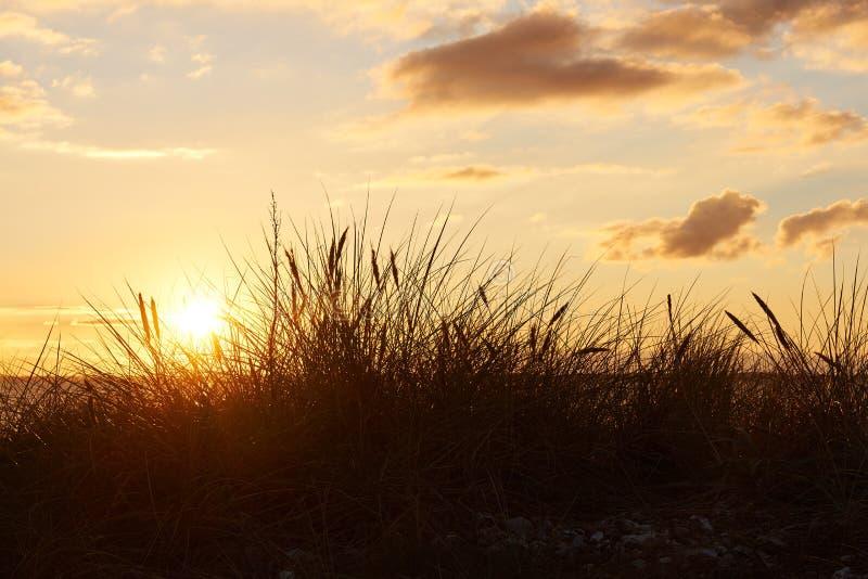 Solnedgång på den Vadum stranden i Salling, Danmark - serie royaltyfri foto