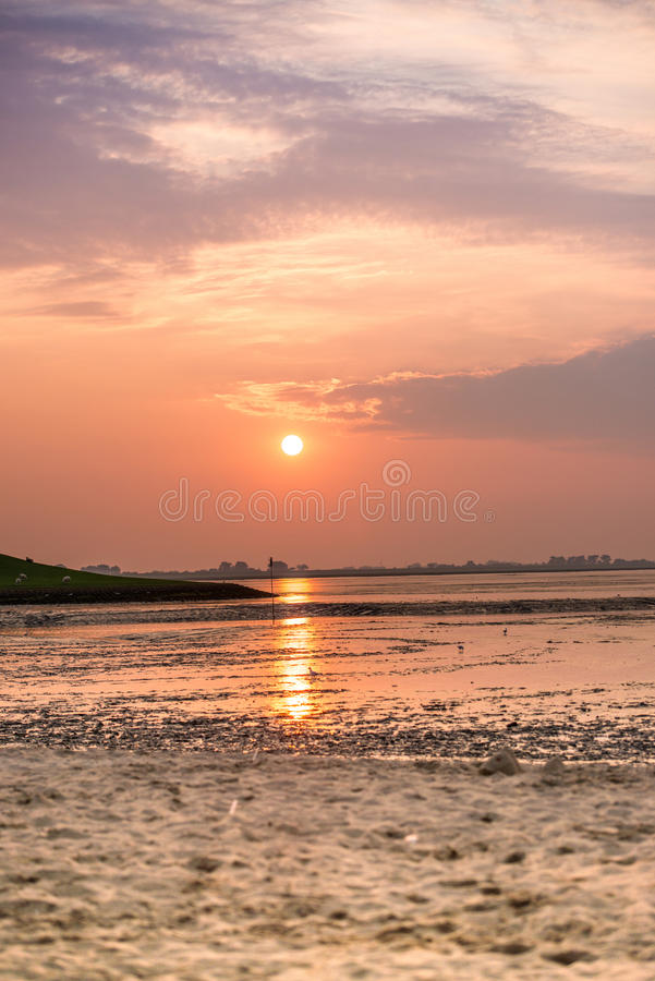 Solnedgång på det Wadden havet arkivbilder