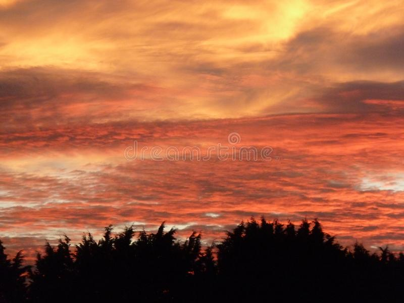 Solnedgång på en blåsig natt royaltyfria bilder