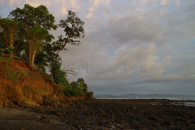 Solnedgång på en svart stenig tropisk strand med flera träd som växer på kullen fotografering för bildbyråer