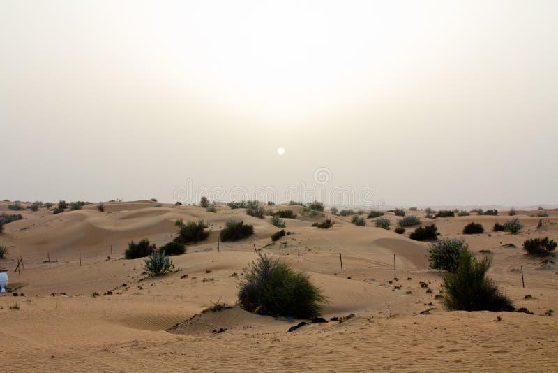 Solnedgång på ett safariläger i Dubai, UAE fotografering för bildbyråer