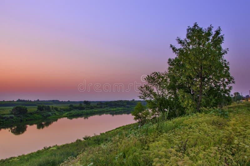 Solnedgång på floden med en sikt på ett stort träd royaltyfri bild