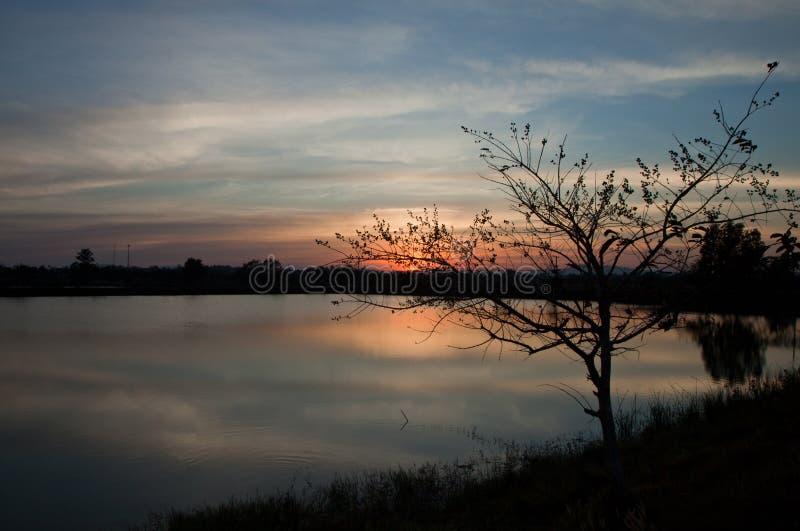 Solnedgång på flodsikt royaltyfri bild