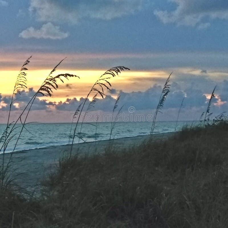 Solnedgång på Gulf Coast av Florida royaltyfria foton