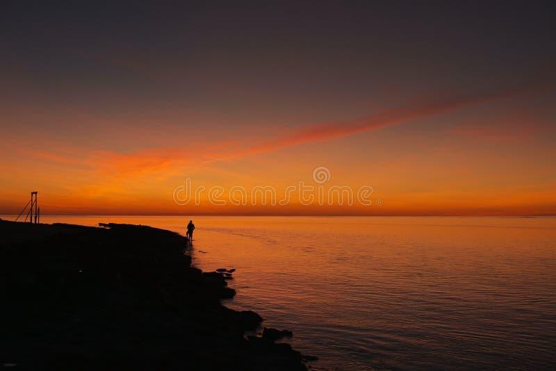 Solnedgång på hägerön royaltyfri bild