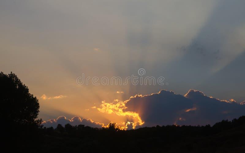 Solnedgång på horisonten av en skog arkivbilder