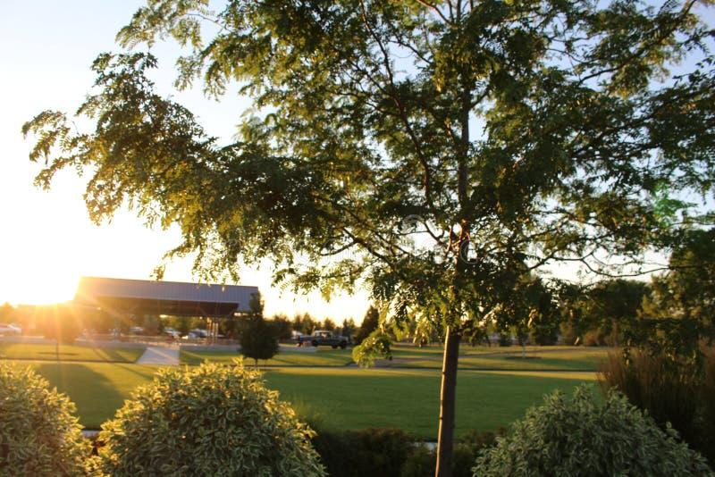 Solnedgång på Julius M Kleiner Memorial Park royaltyfri bild