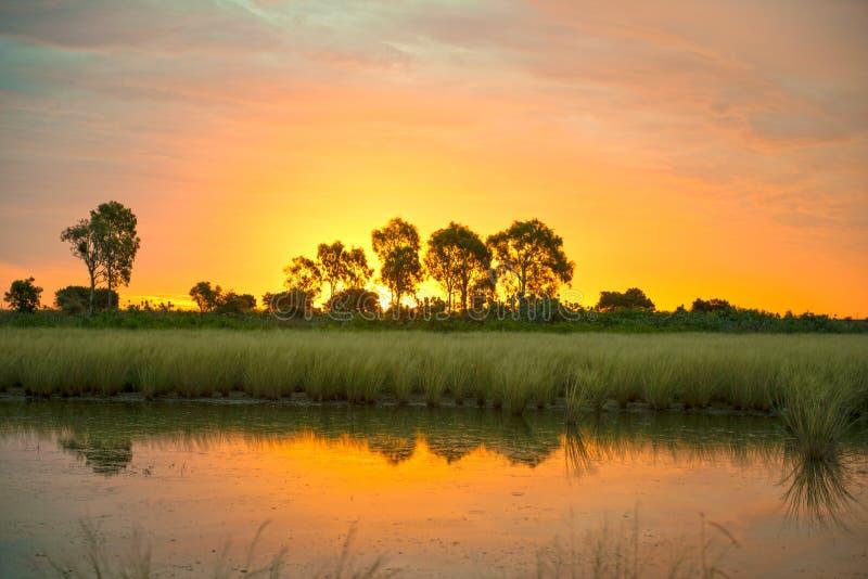 Solnedgång på karumbaen, Queensland royaltyfri bild