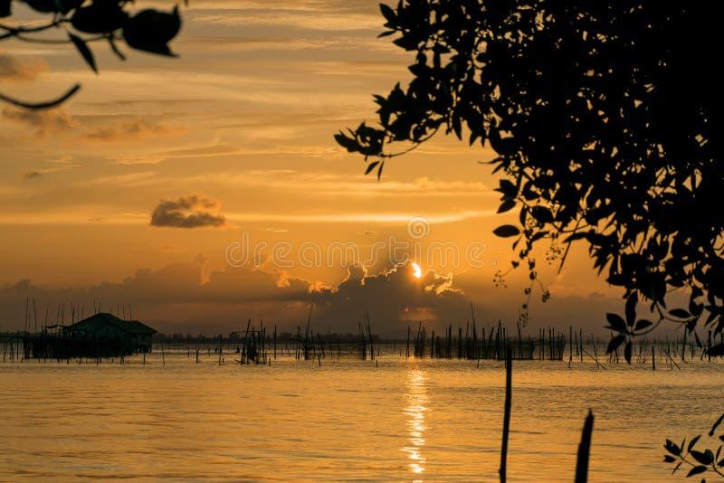 Solnedgång på kohyoen arkivfoton