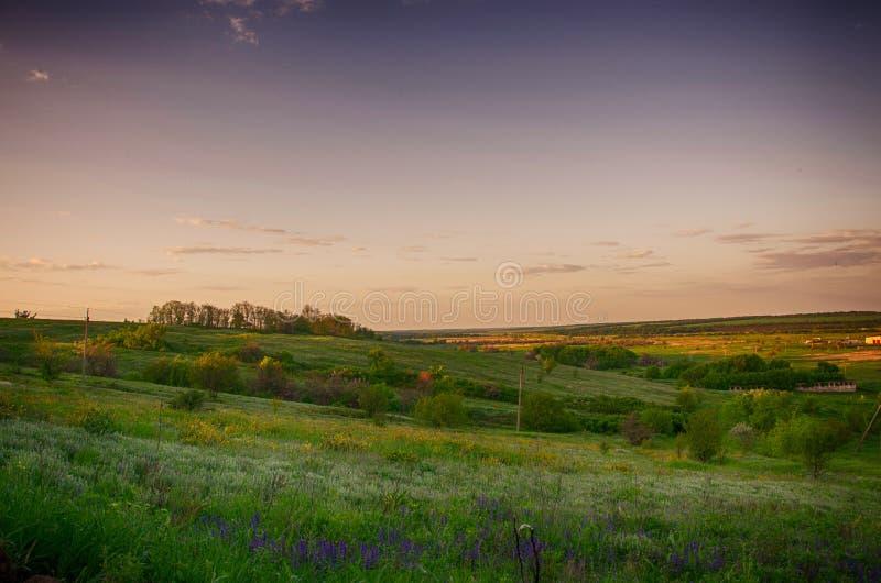 Solnedgång på kullen royaltyfri fotografi