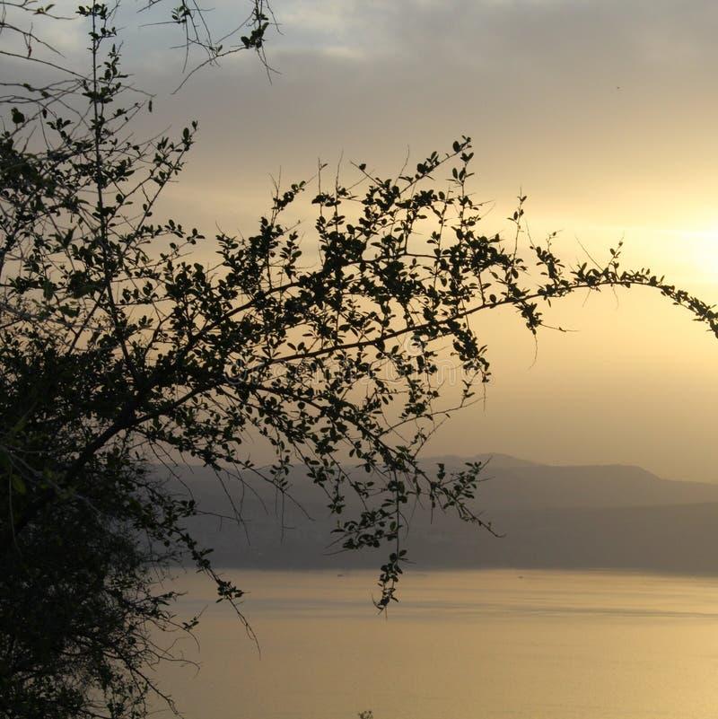 Solnedgång på laken royaltyfria bilder