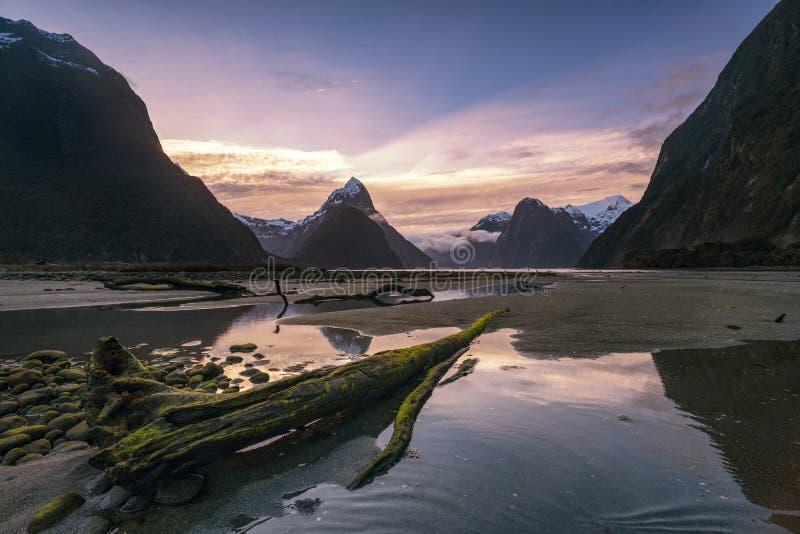 Solnedgång på Milford Sound som är nytt arkivbild