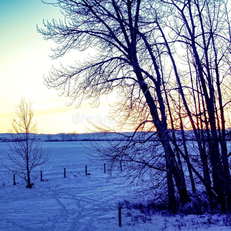 Solnedgång på prärierna royaltyfri fotografi