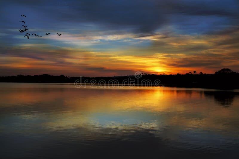 Solnedgång på Rio Negro royaltyfria bilder