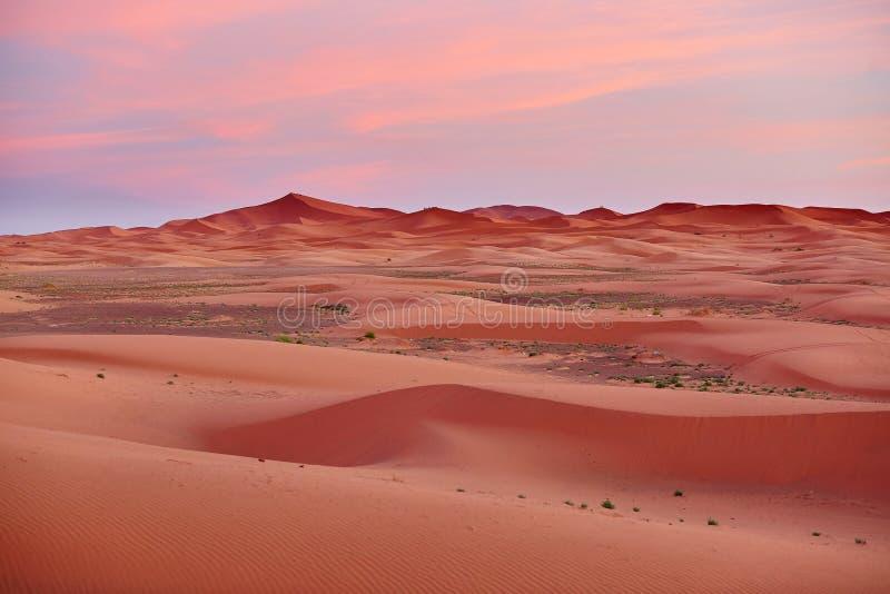 Solnedgång på Sahara Desert, Merzouga, Marocko arkivbilder