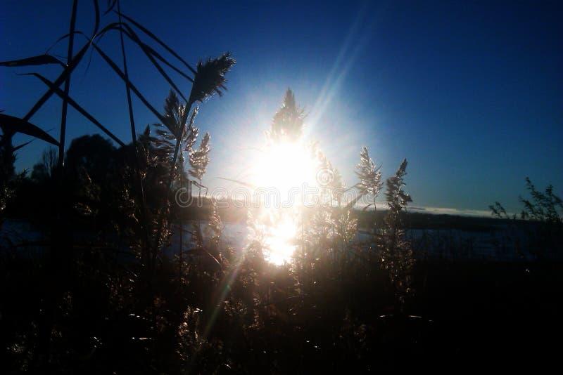 Solnedgång på sjön Seliger fotografering för bildbyråer