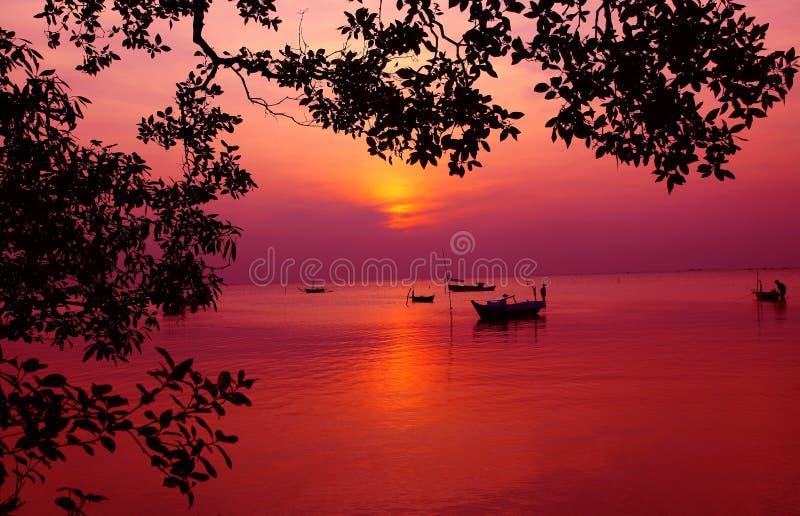 Solnedgång på strand royaltyfria bilder