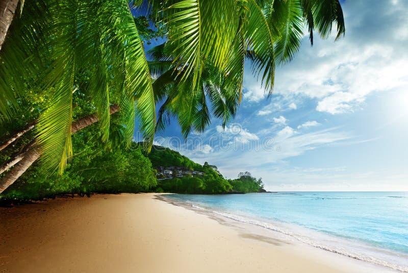 Solnedgång på stranden Anse Takamaka av den Mahe ön, Seychellerna royaltyfri fotografi