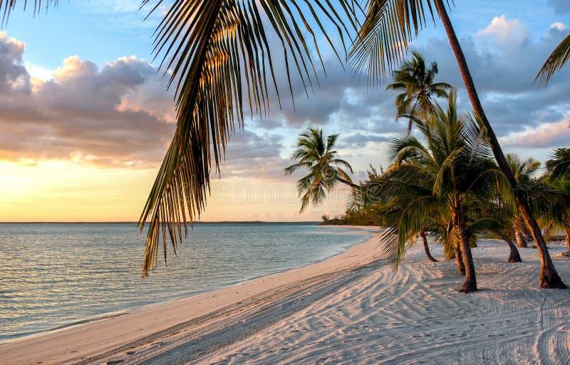 Solnedgång på stranden på Bahamas arkivfoton