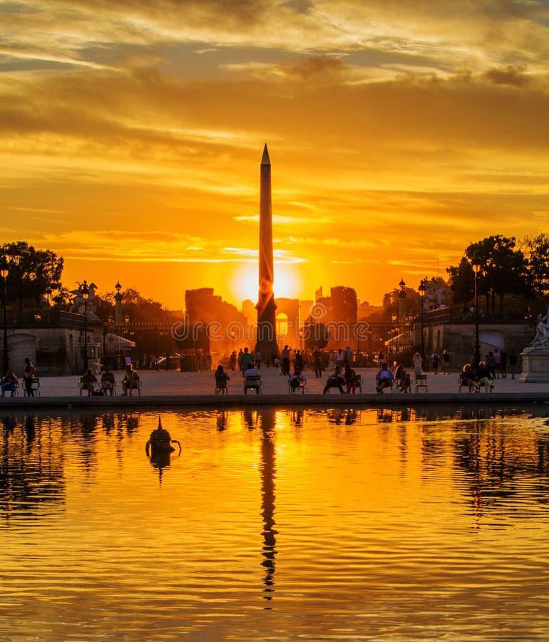 Solnedgång på Tuileries trädgårdar, Paris arkivbilder