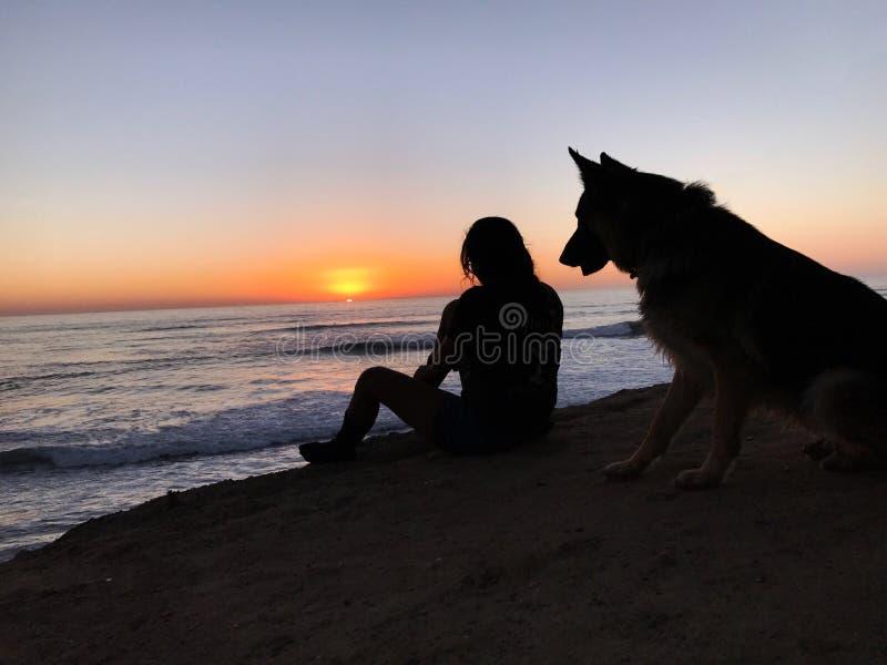 Solnedgång som håller ögonen på med hennes hund royaltyfri fotografi