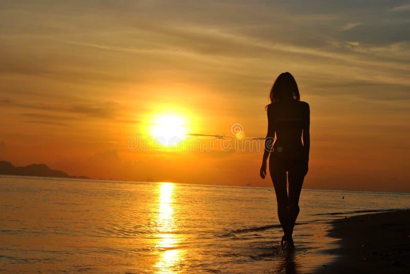 solnedgång thailand arkivfoto