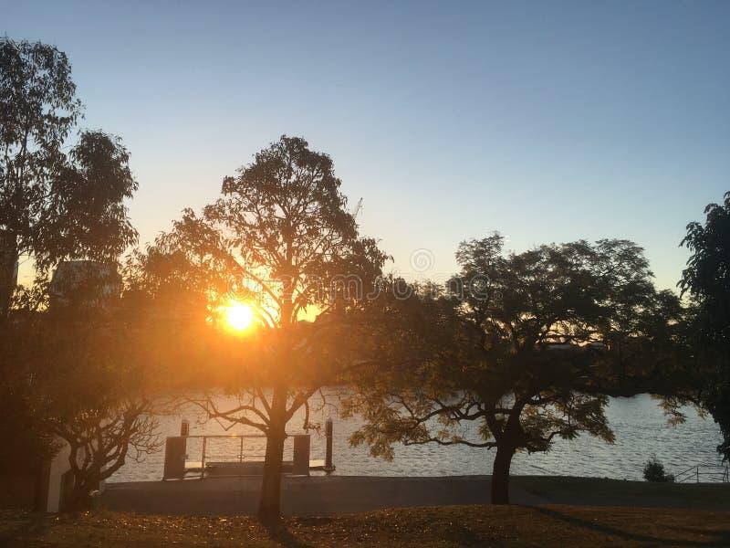 Solnedgång till och med trees royaltyfria foton