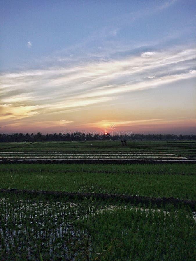 Solnedgång Yogya arkivfoto
