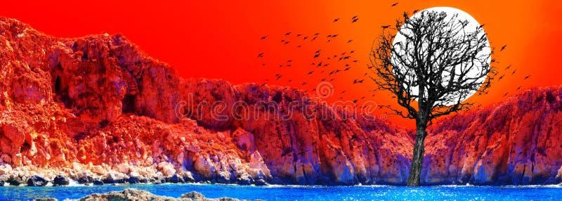 Solnedgångcollage av den röda solnedgången med den torra trädkonturn och svart stock illustrationer