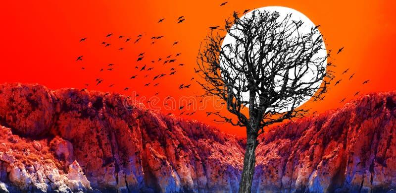 Solnedgångcollage av den röda solnedgången med den torra trädkonturn och svart vektor illustrationer