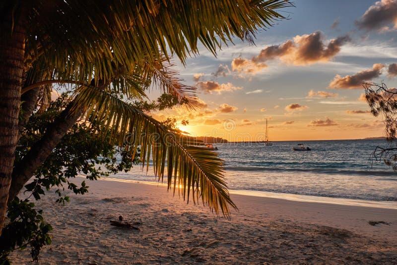 Solnedgången över ön av sörjer i Nya Kaledonien arkivfoto