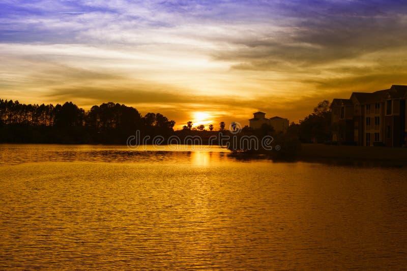 Solnedgången fördunklar palmträdkonturhorisonten royaltyfri bild