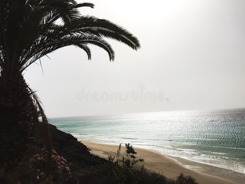 Solnedgången i Fuertaventura, strand och gömma i handflatan royaltyfri bild