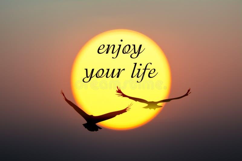 Solnedgången och fåglar med tycker om din livtext royaltyfri bild