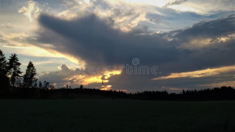 Solnedgången på ett fält, solstrålar som skiner till och med moln i färgerna av guld- och gult royaltyfria foton