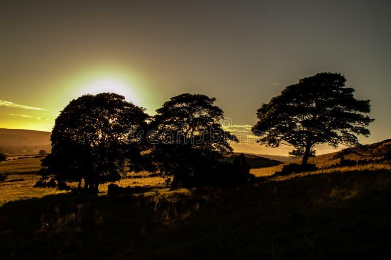 Solnedgången tänder träden, ljung, vaggar och den förstörda ladugården på mörtslutet arkivbilder