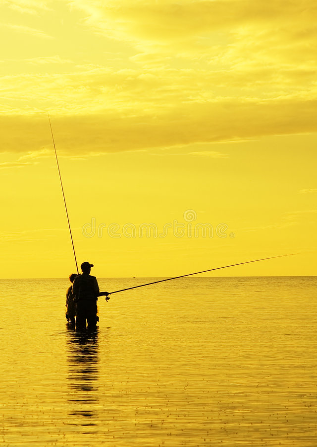 Solnedgångfiske royaltyfria bilder