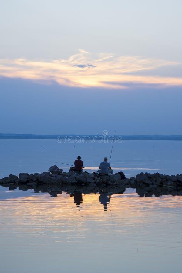 Solnedgångfiske royaltyfri fotografi