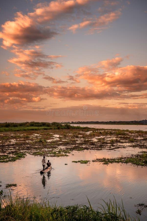 Solnedgångfiske fotografering för bildbyråer